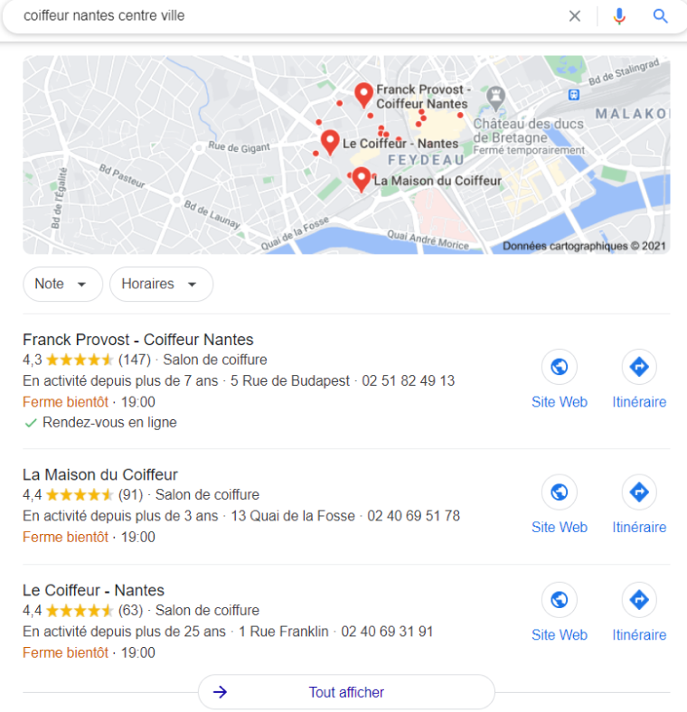 résultat de recherche Google My Business